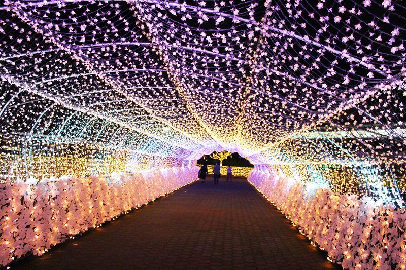 2019年もパワーアップ!「東京メガイルミ」で光の時空旅行へ