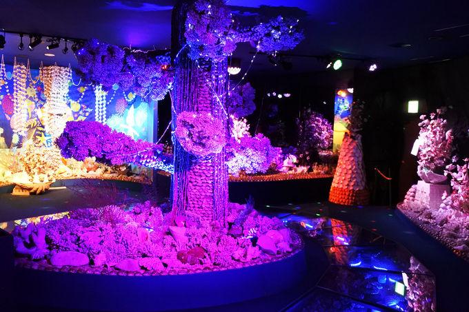 パワースポット竹島近くに「竹島ファンタジー館」がある