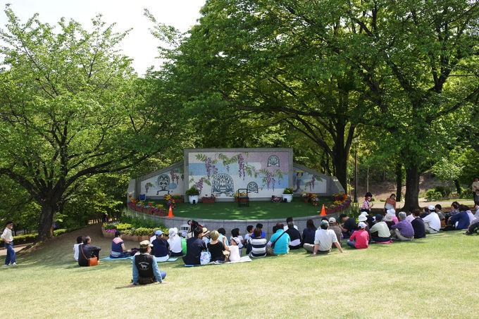 芝生広場でさわやかな初夏を満喫!