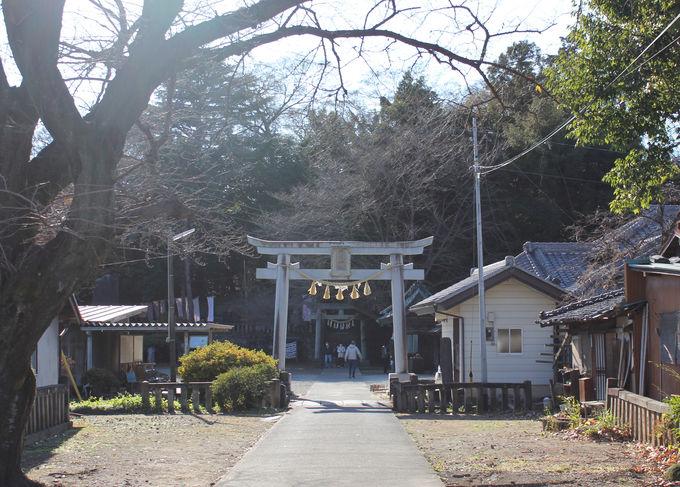 縁結びの前玉神社にもぜひ足を延ばして