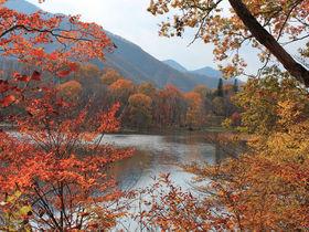 南会津の秋の絶景!大内宿・塔のへつり・観音沼で紅葉狩り