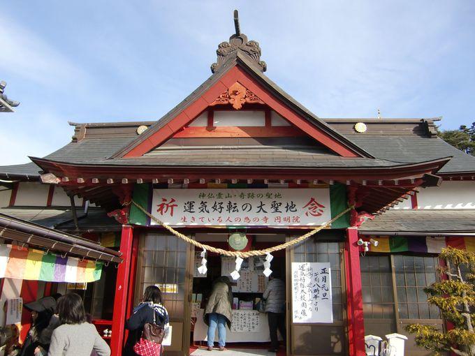 生きている人のための寺、5つの祈願が出来る運付けの寺「円明院」