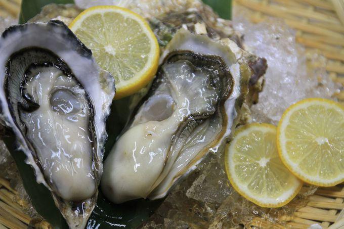 「コンキリエ」の概要と厚岸の牡蠣について