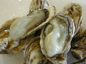 1年中牡蠣がおいしい!北海道厚岸町・道の駅「コンキリエ」