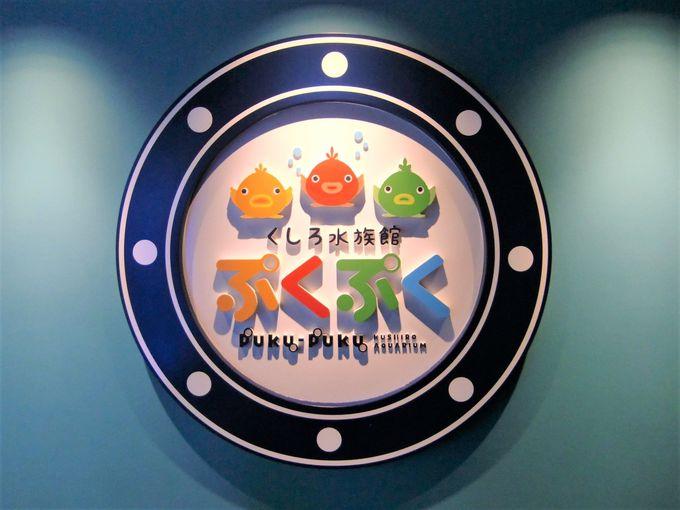見て、触れて、楽しめる!「釧路水族館ぷくぷく」