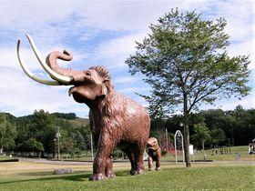 ナウマン象がいた町・北海道幕別町忠類で太古のロマンを感じよう!