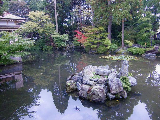 四季折々の景観が味わえる梅村庭園