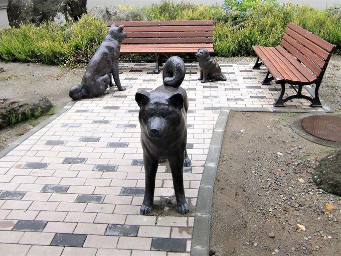 秋田犬の出迎えも!大館能代空港の概要