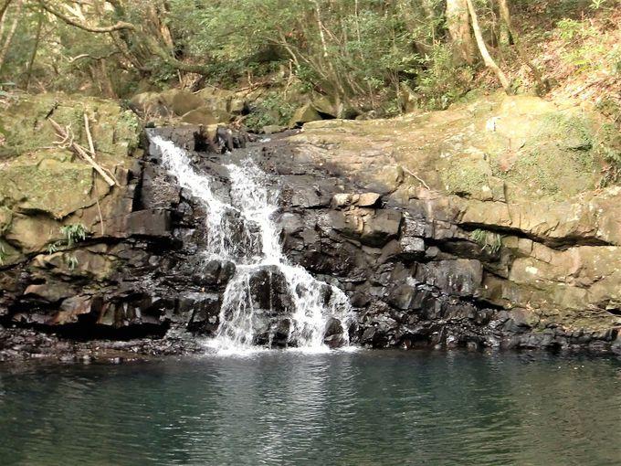 平坦な種子島には珍しい滝!「男淵・女淵の滝」
