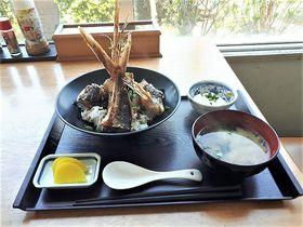 屋久島空港は世界遺産への空の玄関!土産やトビウオ料理が充実