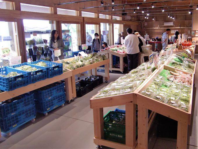 農産物直売所は安平町や近隣の市町の農産品が大集合!