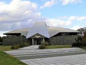 北海道蘭越町「貝の館」はクリオネもいる海の博物館!