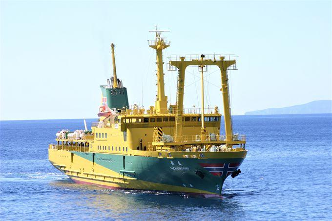 東京発着貨客船では唯一!あの柳原良平氏デザイン「橘丸」