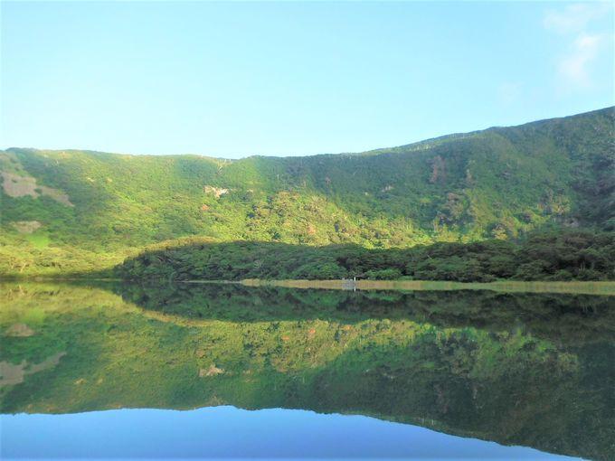 伊豆諸島最大の淡水湖!名木もある野鳥の楽園「大路池」