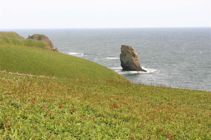 悲恋伝説がある断崖絶壁!浜中町・涙岬と立岩