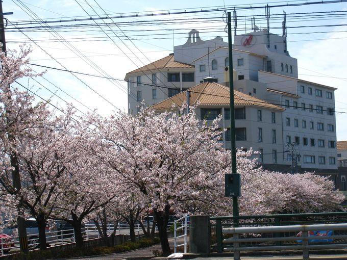 長崎空港から車で8分!周辺には桜の名所も