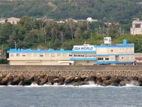 沖永良部島「ホテルシーワールド」は和泊港そば!島旅に最適