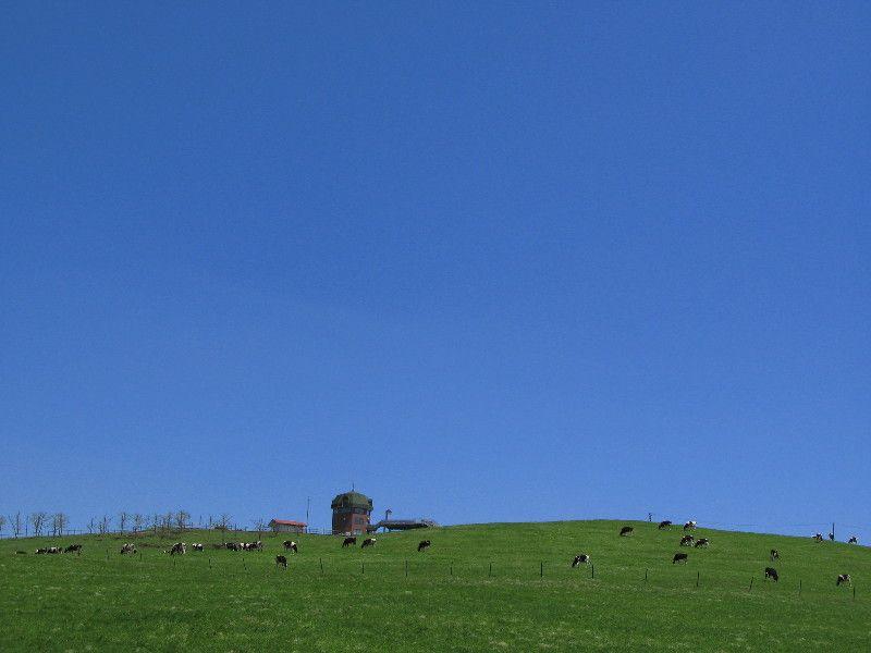 空の広さを体感する 900草原