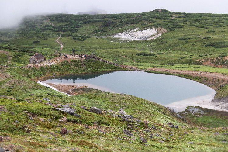 高山植物が多く見られる姿見ノ池周辺