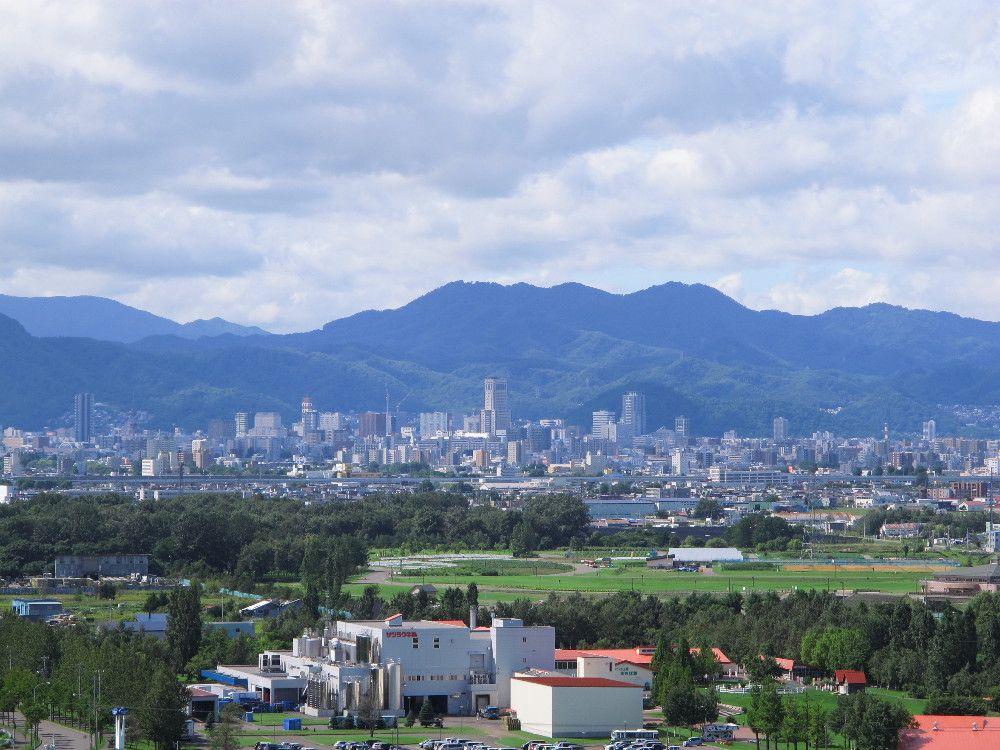 山並みを背後に控える市街地を一望