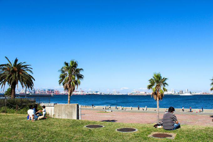 バーベキューも楽しめる!「城南島海浜公園」