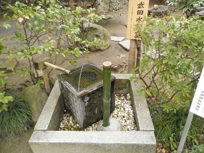 「姫の井戸」と「武田水琴窟」