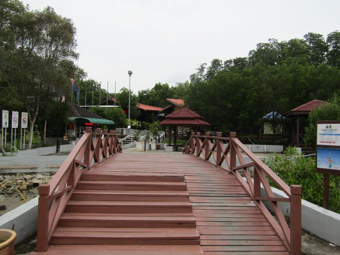 タンジュン・ピアイ・ジョホール国立公園へ!