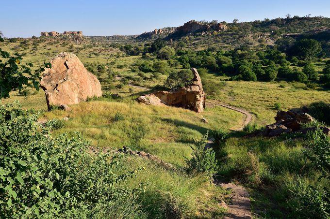 世界遺産!古代王国の跡『マプングブェ(Mapungubwe)』