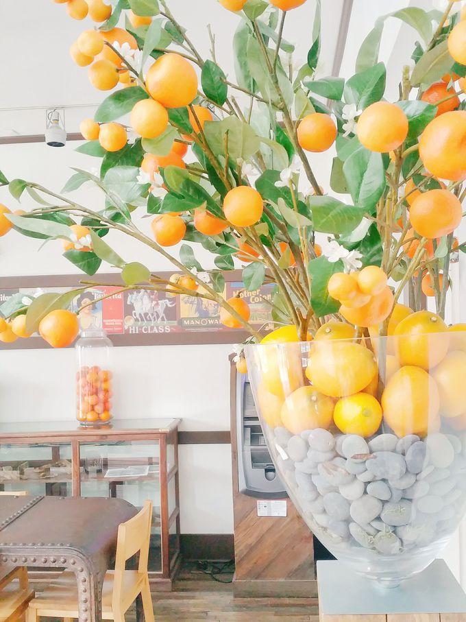 超斬新なアイディアで生まれ変わったオレンジ加工工場とは?