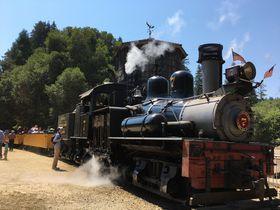 樹齢1000年以上!レッドウッドの森を19世紀の蒸気機関車で巡る!