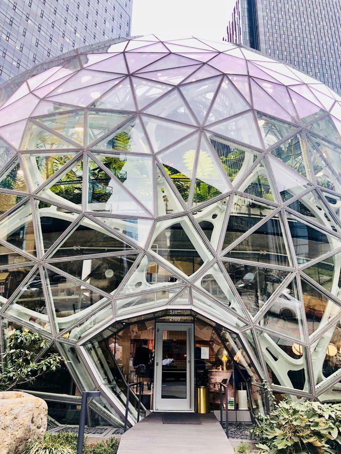 未来体験したいならアマゾンキャンパスへ