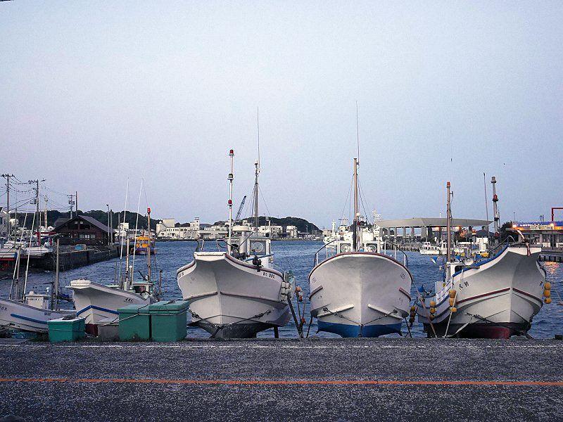 三崎港の目の前にある秘密基地のような酒宿