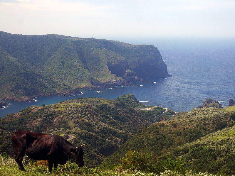 絶景と不思議がいっぱいの隠岐諸島・西ノ島を観光!これを見逃したらイカんよ