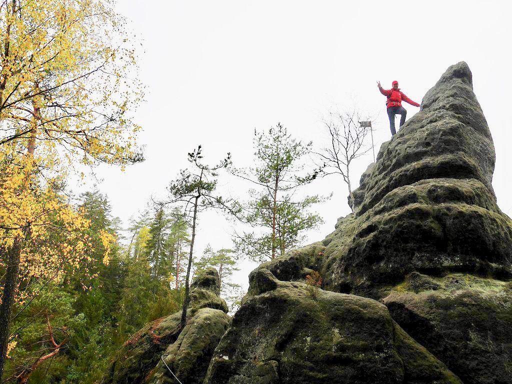 エルフが住んでいそうなチェコ・ボヘミアンスイスのフォトジェニックな森