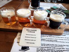チェコビールについて学ぶならジャテツとプルゼニへ行ってみよう!
