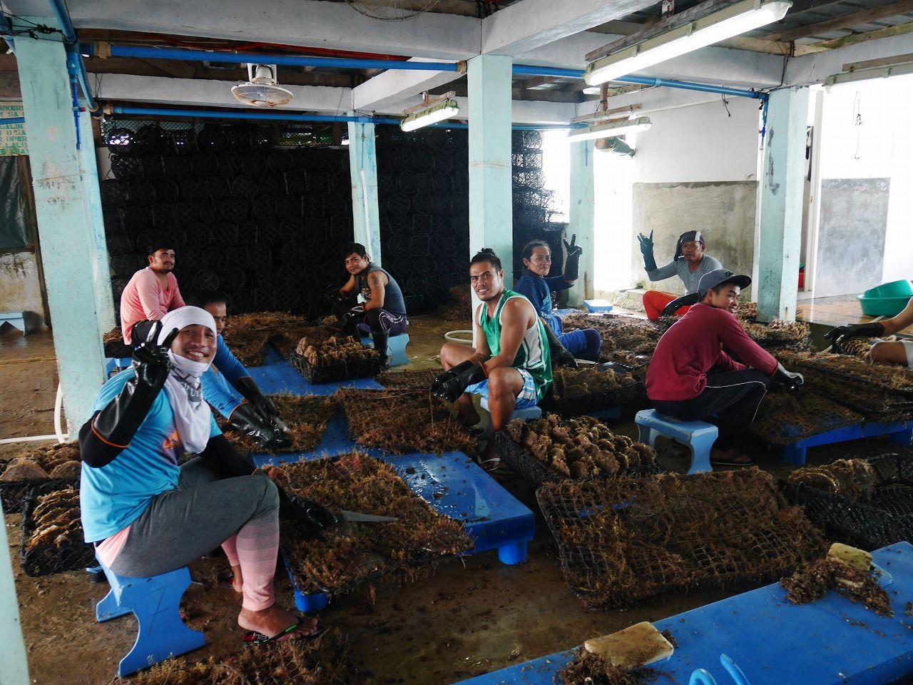 250人の従業員が住む島へ