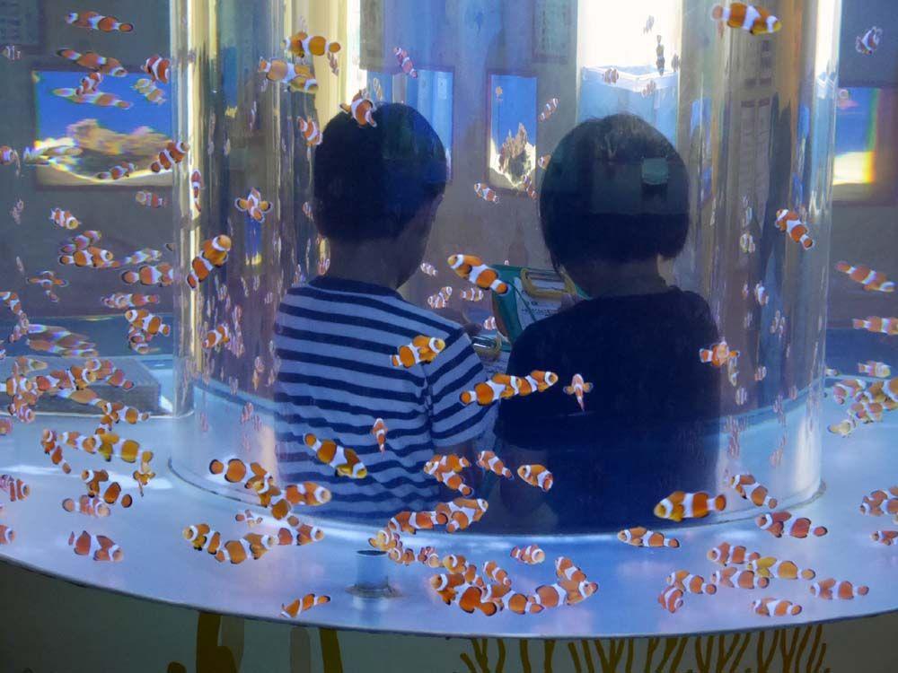 2日目午前 大人も楽しいマニアックな海洋科学博物館