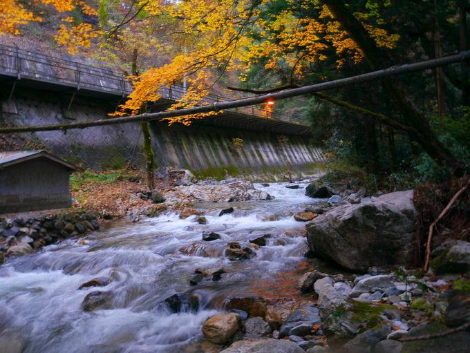 水戸から車で1時間。里山にある小さな宿「山田屋旅館」