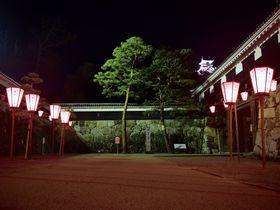 見よ、闇夜に浮かぶ姿を!夜の高知城が美しい……