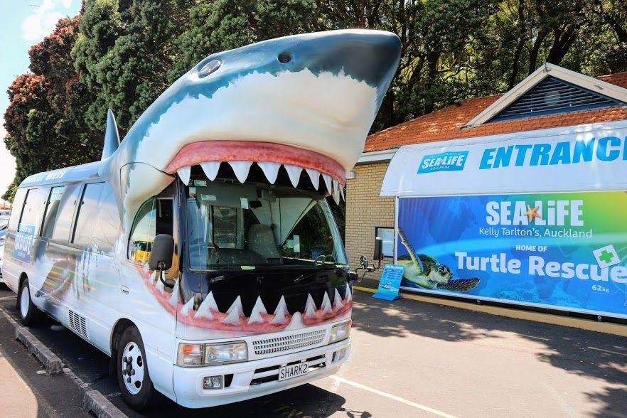 「ケリータールトンズ水族館」その他のの見どころ