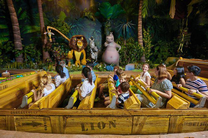 マダガスカルや古代エジプトは子供にも人気!