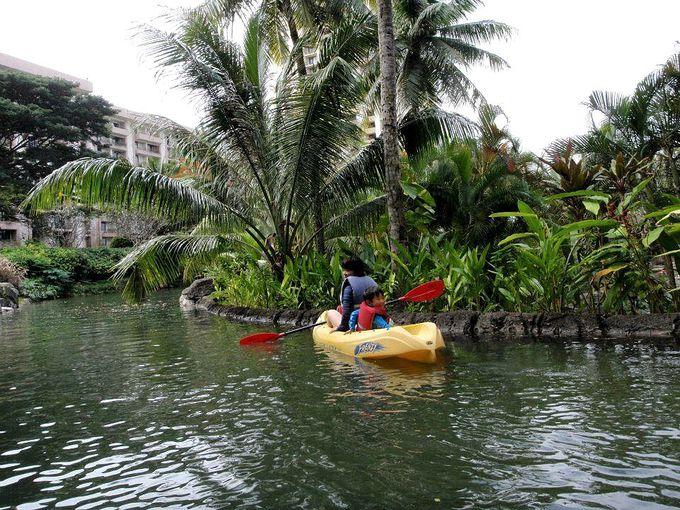 ジャングル体験しているようなラグーンカヤックも人気