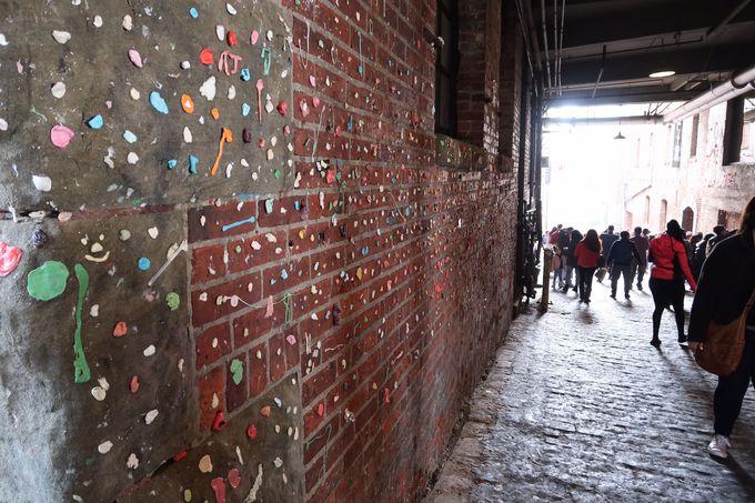 まるで現代アート!? 増え続ける壁のガム