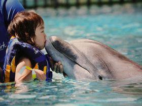 子連れ海外旅行はやっぱりハワイがおすすめ!5つの理由
