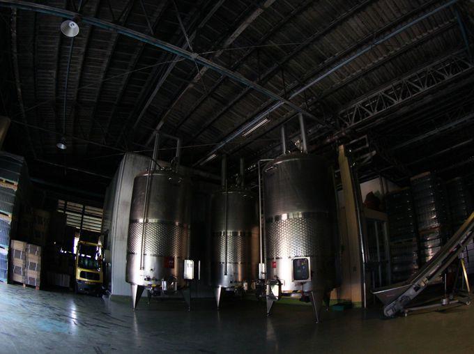 最先端の設備が揃う醸造所を見学
