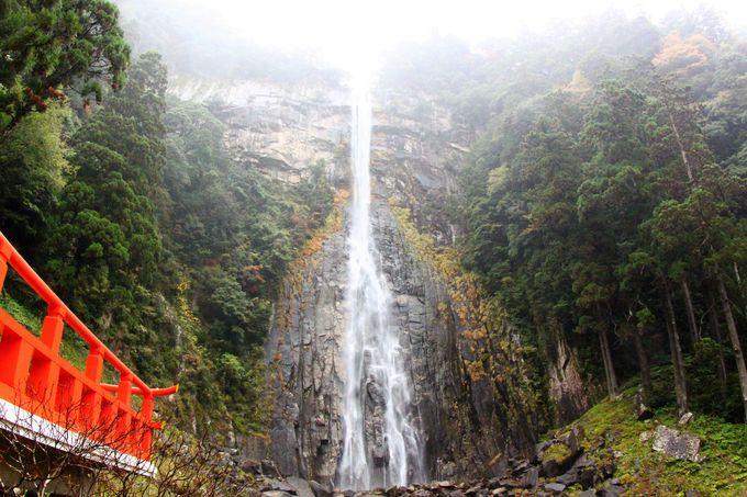 マイナスイオンたっぷり!日本一の那智の滝