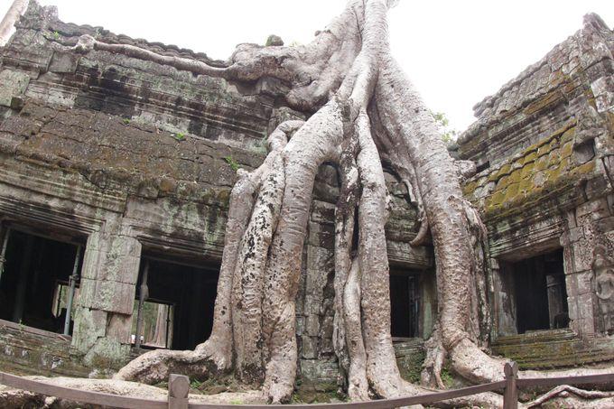 3.格安でカンボジア旅行するコツは?