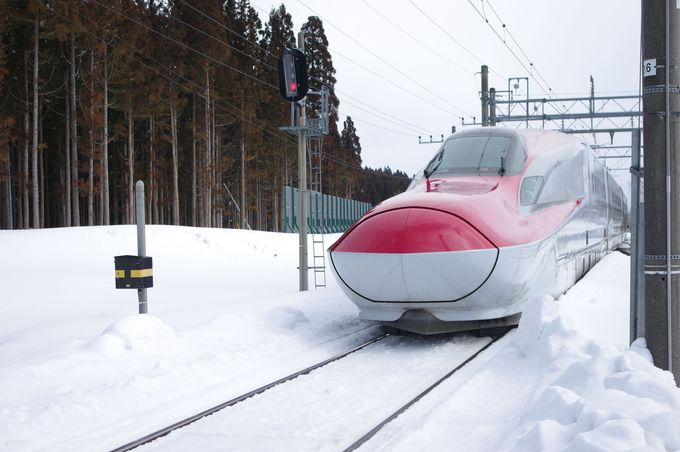 目の前を新幹線が通過するミスマッチがおもしろい。