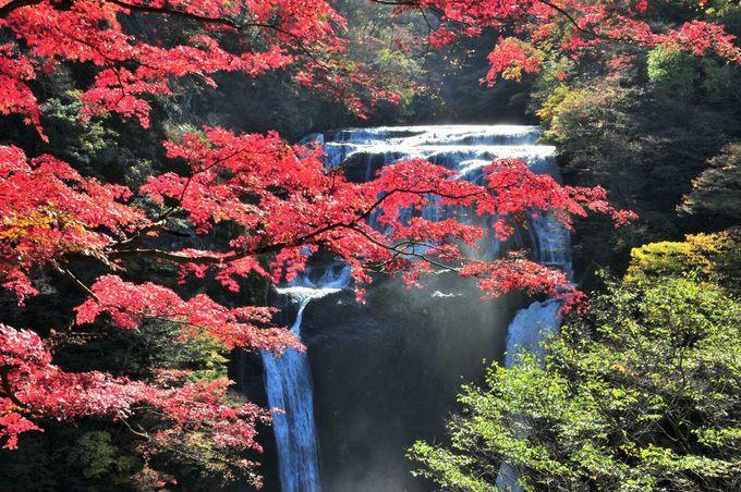 高さ120m、4段に流れ落ちる茨城県の名瀑「袋田の滝」