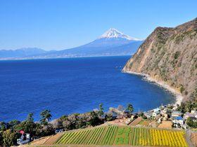 海と富士山と海鮮グルメ!沼津観光おすすめスポット10選